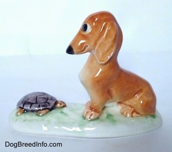 The left side of a figurine of a brown Dachshund in a sitting pose across from a tortoise and it is looking down at the tortoise.