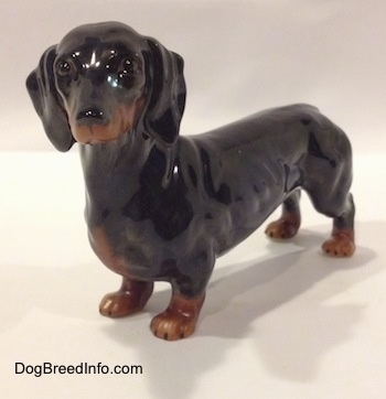 The front right side of a black and brown Dachshund figurine. The figurine has great face detail.