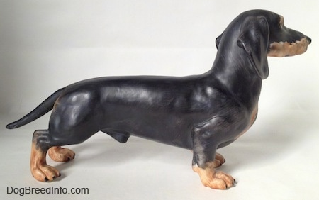 The right side of a black with tan Dachshund figurine. The figurine has great details.