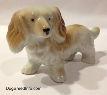 The front left side of a porcelain white with tan long haired Dachshund figurine. The figurine has short legs with big paws.