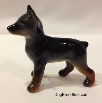 The left side of a figurine that is of a black and brown Doberman Pinscher puppy. The figurine has cropped ears and an unpainted face.
