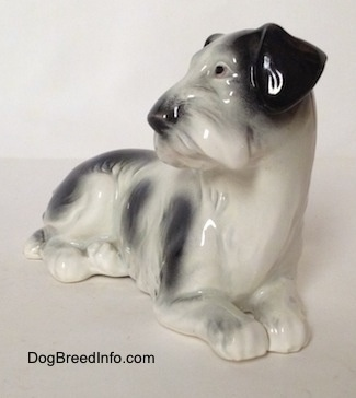The front right side of a white and black Doxie laying down figurine. The figurine has a black nose.