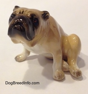 The front left side of a tan and brown Bulldog figurine in a sitting pose. The figurine has great face details.