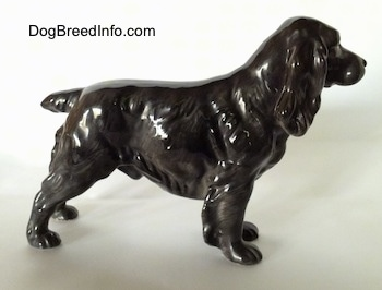 The right side of a figurine that is of a blue roan English Cocker Spaniel. It is hard to tell the difference between the ears and the head of the figurine.