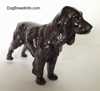 The front right side of a blue roan English Cocker Spaniel figurine. The figurine is very glossy and it has no paint on its face.