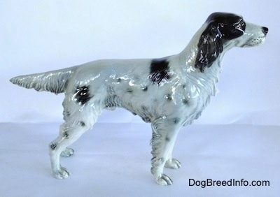 The right side of a figurine that is of a black and white English Setter in a standing pose. The figurine has a fringe hair details along the trim of its body and legs. It has long black ears, a long snout and a black nose.