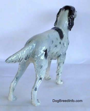 The back right side of a black and white English Setter figurine that is in a standing pose.