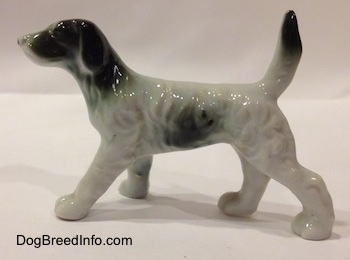 The left side of a black and white English Setter bone china figurine. The body of the figurine has hair details all on its side.