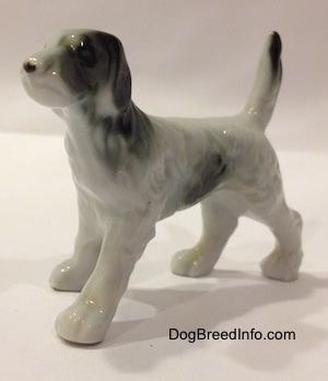 The front left side of a bone china black and white English Setter figurine. The figurines face lacks detail.