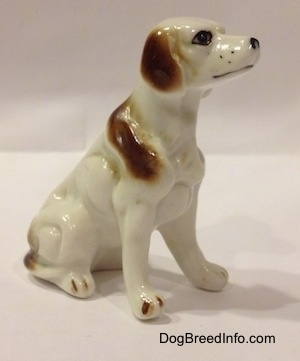 The front right side of a bone china white with brown English Setter figurine. The figurine has long legs and small paws.
