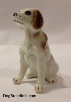 The front left side of a white with brown bone china English Setter figurine. The figurine has a detailed face and brown ears.