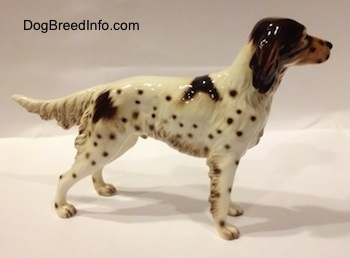 The right side of a figurine of a porcelain brown and white English Setter. The figurine has a medium length tail.