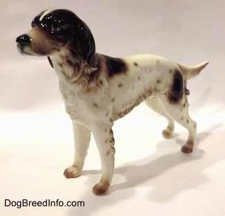 The front left side of a figurine of a white with brown English Setter in a standing pose. The figurine has a long muzzle.