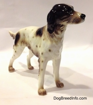 The front right side of a white with brown English Setter figurine that is in a standing pose. The figurine has a detailed face.