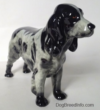 The front right side of a black and white English Springer Spaniel figurine. The figurine has brown eyes, a black nose and long black ears. Its tail is docked.