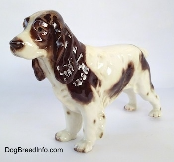 The front left side of a figurine of a white with brown English Springer Spaniel. The ears of the figurine are large, brown and glossy.