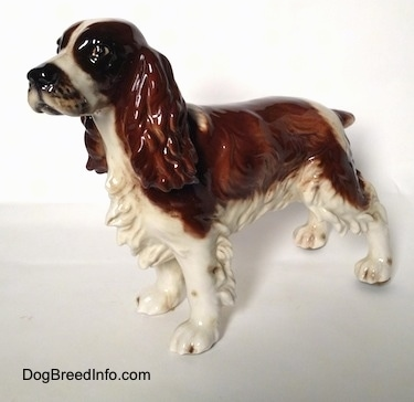 The front left side of a figurine of a brown and white with black English Springer Spaniel in a standing pose. The face of the figurine has a detailed face, it has black eyes and a black nose.