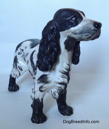 The front left side of a black and white English Springer Spaniel figurine with a matte finish. The figurine has black at the tips of its hair.