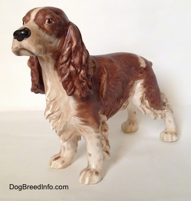 The front left side of a brown and white English Springer Spaniel in a standing pose figurine. The chest of the figurine has great hair details.
