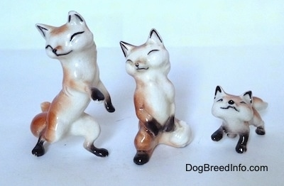 Three different fox figurines. Two of the foxes are on there hind legs and one is on a ll four and looking up.