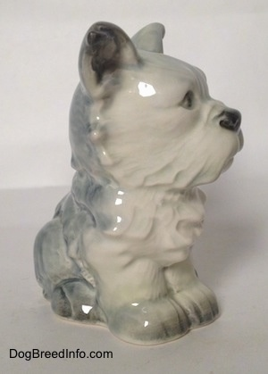 The front right side of a figurine of a white with black French Bull Tzu. The figurine has black tipped nails.