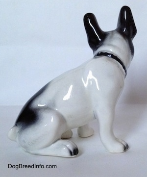 The right side of a white and black French Bulldog that is sitting figurine. The figurine has short legs and small paws.
