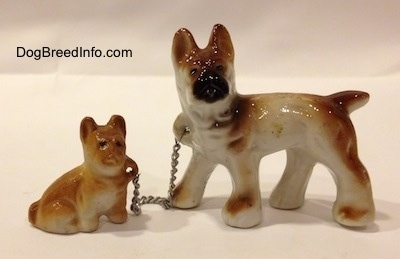 The right side of a brown with white and black French Bulldog that has a chain attached to a sitting Frenchie puppy figurine.