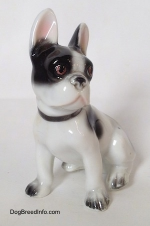 The front left side of a white and black French Bulldog in a sitting pose figurine. The figurine has white paws and black nails.