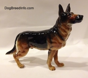 The right side of a black and tan standing German Shepherd figurine. The figurine has fine details along its body.