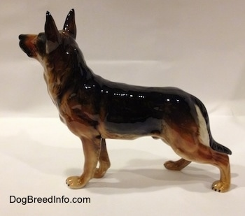 The left side of a figurine of a black and tan standing German Shepherd. The figurine is glossy.