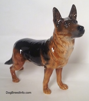 The front right side of a figurine of a brown with black German Shepherd standing, The figurine has fine hair details on its chest.