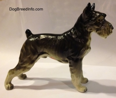 The right side of a black, grey and white Giant Schnauzer bone china figurine. The figurine has a short tail that is arched in the air.