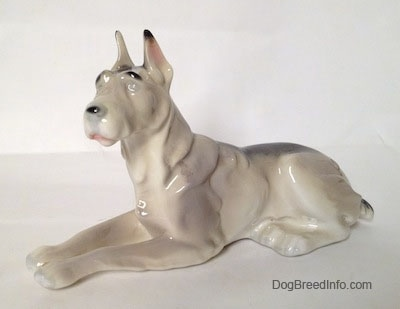 A white with black Great Dane laying down figurine. The figurines face is mostly unpainted.