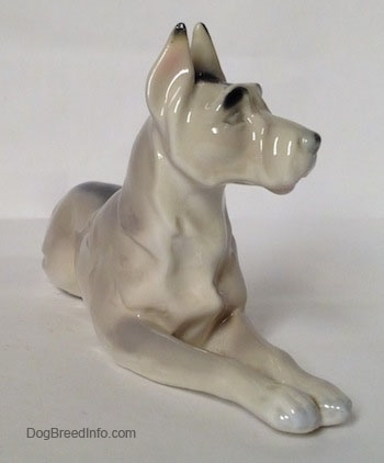 The front right side of a white with black Great Dane laying down figurine. The figurine has black eyebrows and a black nose.