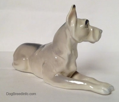 The front right side of a figurine of a white with black Great Dane that is laying down. The figurine has a detailed chest.