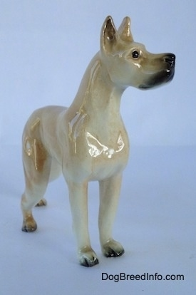 The front right side of a tan Great Dane figurine. The figurine has perked up ears and it has black on the inside of its ears.