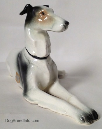 The front right side of a white with black and tan Greyhound in a lying pose figurine. The figurine has tiny black circles for eyes.