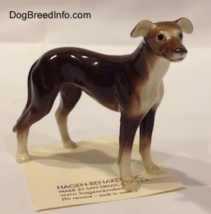 The front right side of a brown with white Greyhound figurine. The figurine has small black eyes.