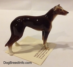 The right side of a figurine of a brown with white Greyhound. The figurine has long brown legs and it has small white paws.