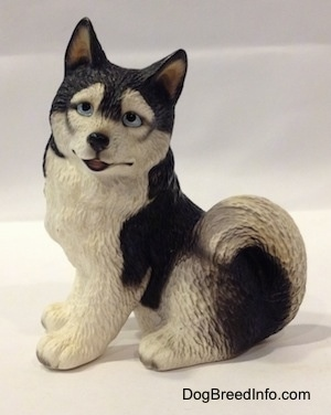 The left side of a black and white Husky figurine in a sitting position. The figurine has its mouth slightly open and it is looking forward. The dog's eyes are blue, nose is black and it has small perk ears. The fluffy tail is curled up over its back.