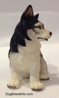 The front of a figurine of a black and white Husky figurine. The figurine has big furry paws a black nose and blue eyes.