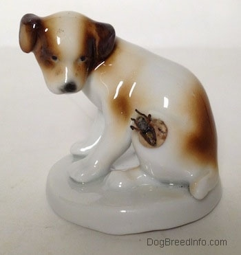 The left side of a brown and white Jack Russell Terrier figurine that has a fly on its side. The figurine has black circles for eyes and it is looking down at the fly.