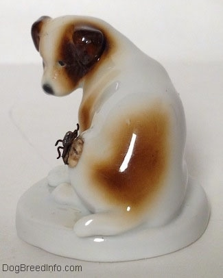 The back side of a brown and white Jack Russell Terrier figurine on a round base and there is a large fly on its side. The figurine has a short tail.