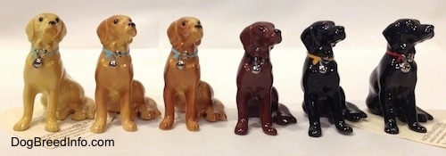 A Line-up of Hagen-Renaker miniature Labrador Retrievers and their different color variations. Each figurine is looking up and to the right.