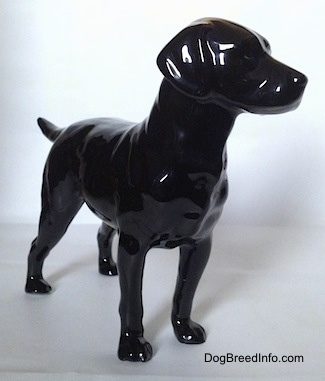 The front right side of a figurine of a black Labrador Retriever. The ears of the retriever are black and attached to its head.