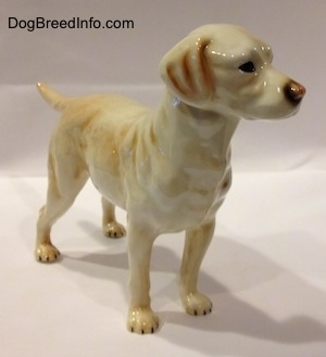 The front right side of a yellow Labrador Retriever figurine.