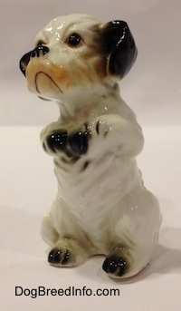 The front left side of a bone china figurine of a white with black Peek-A-Poo in a begging pose. The figurines paws are black.