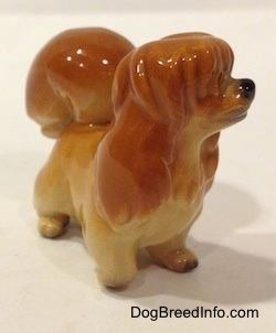 The front right side of a brown with tan figurine of a Pekingese puppy. The figurine has short legs.