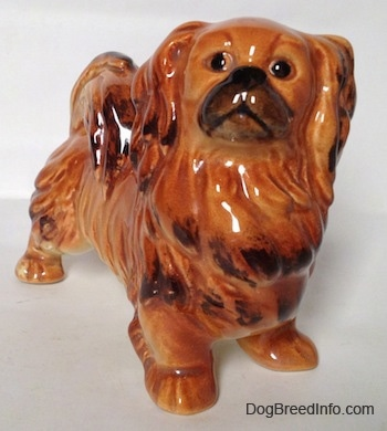 A brown and tan with black Pekingese figurine is looking up and towards the left.