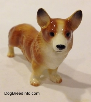 The front right side of a porcelain figurine that is of a brown with white Pembroke Welsh Corgi. The figurine has black circles for eyes. Its legs are short and low to the ground. It has bat ears that are set wide apart.